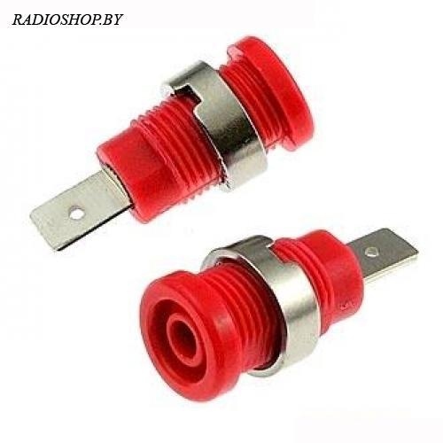 Z017 4mm RED
